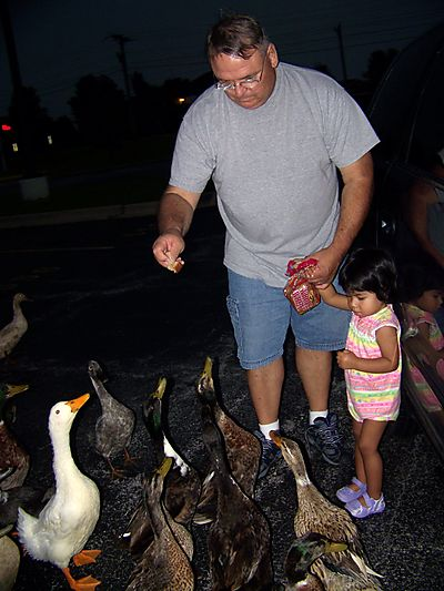 Feed the ducks 001