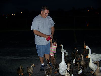 Feed the ducks 007